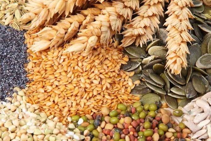 مواد اولیه خوراک دام و طیور
